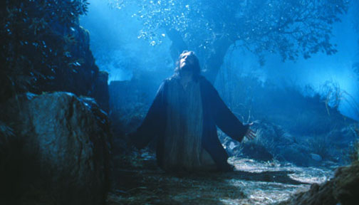 passion-garden-jesus-7